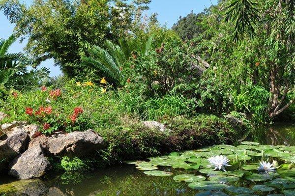 ischia giardini la mortella