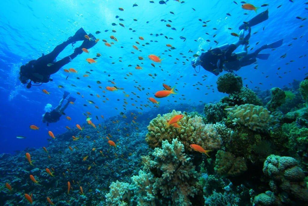 Sail e Dive sull'isola di Ventotene